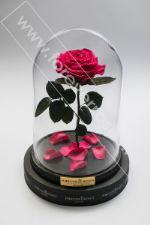 Роза в колбе маленькая Foreverroses