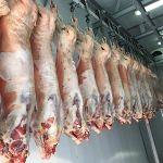 Цены на мясо баранины в Узбекистане