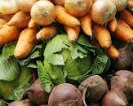 овощи свежие оптом