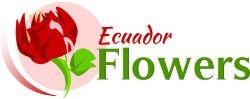 Ecuador Flowers — оптовые поставки цветов из Эквадора