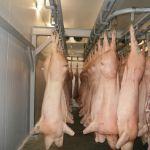 Цены на замороженную свинину в Китае