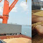 Цены на пшеницу в Китае (на октябрь 2019 год)
