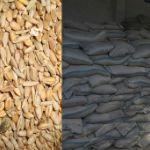 Цены на пшеницу и овес в апреле 2019 года