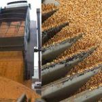 Цены на пшеницу в Ираке в апреле 2019 года