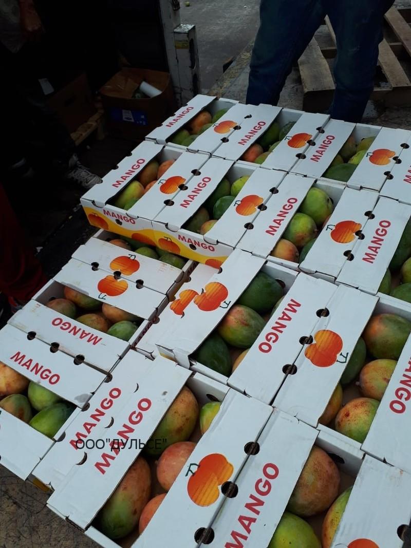 Манго в коробках (транспортировка)