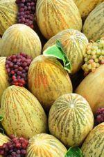 поставка овощей из Туркмении