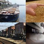 Цены на пшеницу в Китае в июле 2018 года