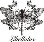 Libellulas — женская модная одежда