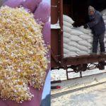 Цены на дробленную кукурузу в Монголии (на февраль 2019)