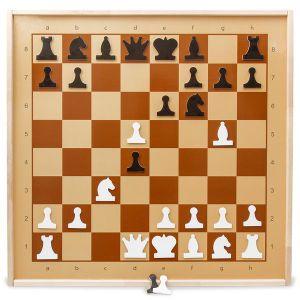 Демонстрационные шахматы магнитные. Основное преимущество шахмат - это наглядность. Игровое поле размером 70х70 сантиметров, позволяет проводить разбор шахматных партий и этюдов для небольшой аудитории любителей шахмат и гроссмейстеров в классных аудиториях, небольших конференц-залах.
