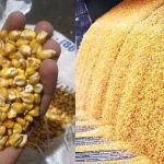 Цены на кукурузу в декабре 2018 года