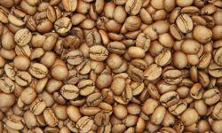 Кофе, капсульный кофе, чай, опт, мелкий опт, розница