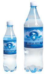 минеральная лечебно-столовая вода