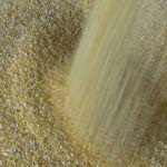 Цены на дробленную кукурузу в июле 2018 года