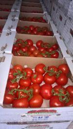 крупный опт огурцы, томаты, яблоки