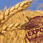 Цены на пшеницу в июне 2020 года
