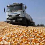 Цены на кукурузу с 10 сентября 2015 года в Улан-Баторе, Монголия