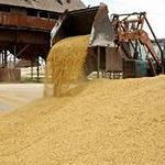 Цены на август 2014 года: Пшеница 3 класс
