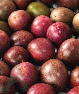 Маракуйя (фрукт)