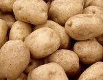 Картофель 123