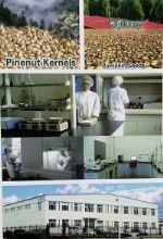 экспорт семян тыквы, кедрового ореха, сухих плодов годжи