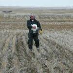 Можно ли мочевину из сельского хозяйства и любую другую использовать для SCR систем?
