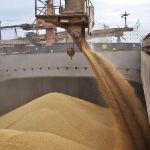 Продажа пшеницы 3 класса в порту Астрахань, Россия