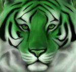экологические товары для бизнеса с нанесением Вашего логотипа