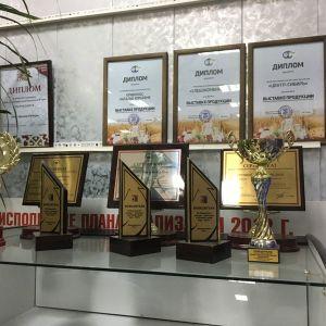 Призы, дипломы, награды)