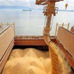 Цены на пшеницу в порту Астрахань, Россия