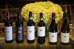 белое и красное вино из Италии-Тоскана оптом