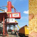 Россия— Венесуэла: прямые поставки пшеницы (на декабрь 2019)