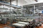 производство молочной продукции растительного происхождения