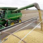Цены на кукурузу с поставкой на Азербайджан