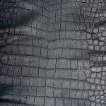 Натуральная кожа крокодила Dandy Lab