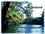 Родниковая вода из Новой Зеландии