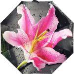 Зонт женский арт.164 - от 345 руб.