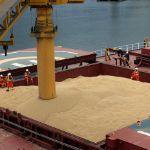 Цены на пшеницу 3 класса в портах ЮФО России