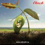 производство и экспорт сухофруктов и орехов из вьетнама