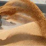 Цены на пшеницу 3 класса ГОСТ в декабре 2014 года