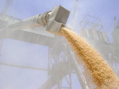 Цены на пшеницу с доставкой до Армении
