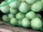 Овощи из Беларуси