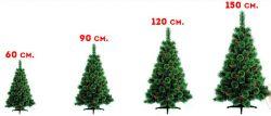Брослава — елки новогодние оптом