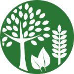 производство и оптовая продажа овощей