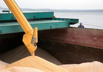 Пшеница Твердая на FOB Новороссийск