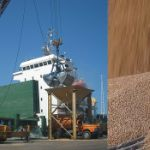 Цены на пшеницу в Омане