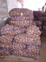 ИП Дмитриев А. В. — картофель, овощи оптом