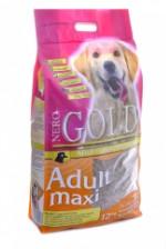 Nero Gold Adult Maxi 26⁄16