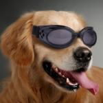 Солнцезащитные от УФ ветрозащитные очки для собак
