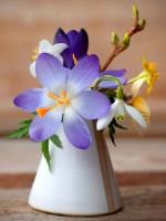 Картины и постеры Woozzee Весенние полевые цветы в мини-вазе